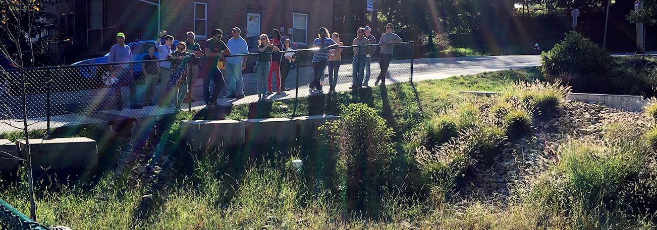 National Green Infrastructure Certification Program participants viewing a stream